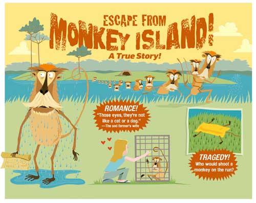 Monkey IslandBlog