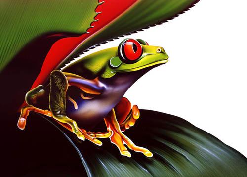 Soukup_Frog